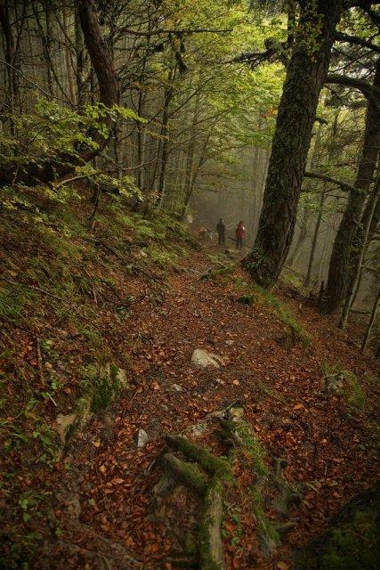 Caminar por senderos ocultos