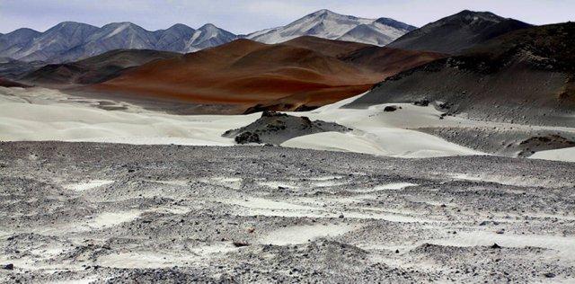 Desierto costero