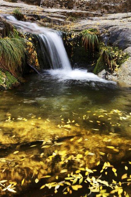 Detalle de agua en Guadarrama