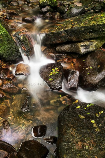 Detalle de agua y roca
