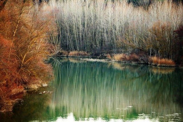 El río desnudo