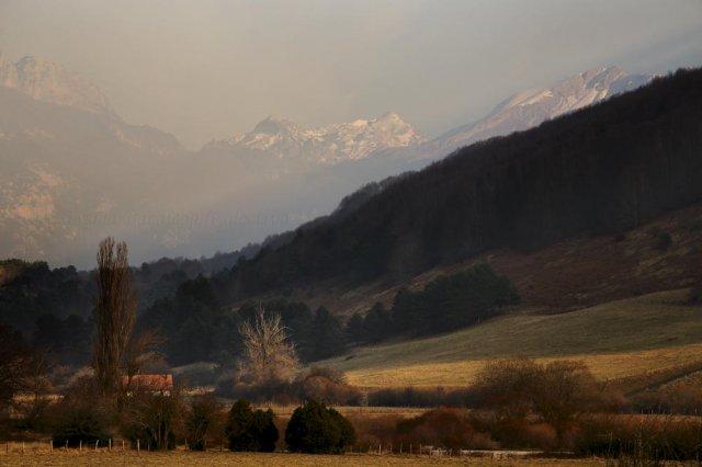 Invernal pirenaica