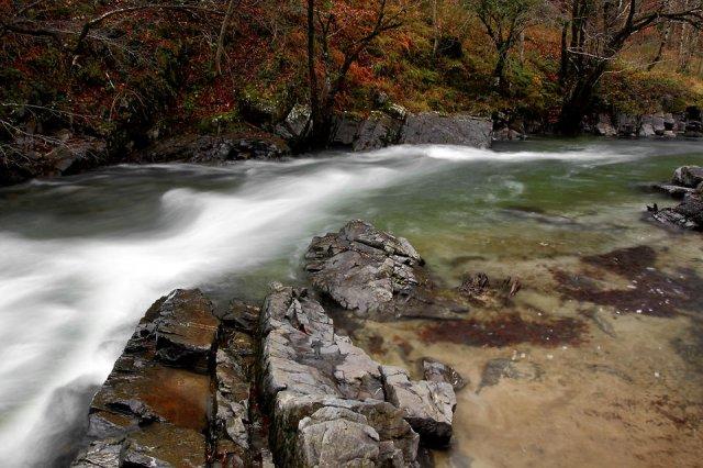 La curva del río
