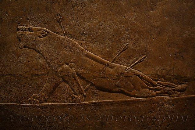 La leona de Amurabi