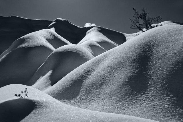 Nieve sobre arcilla. Y dos pinos