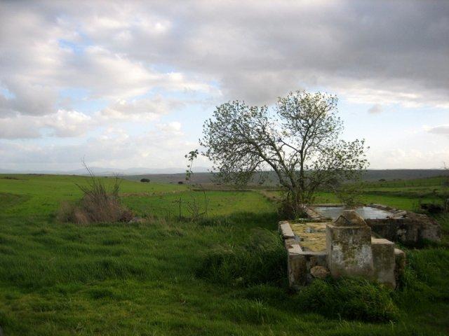 Pilón cerca de Medina de las Torres