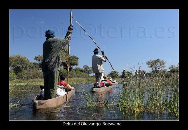 Por el delta del Okavango