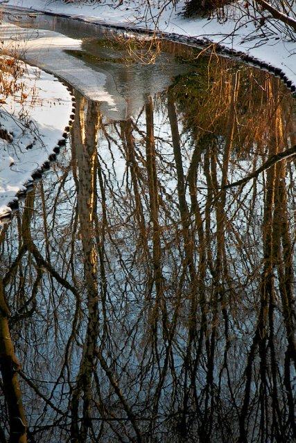 Reflejos en Tiergarten