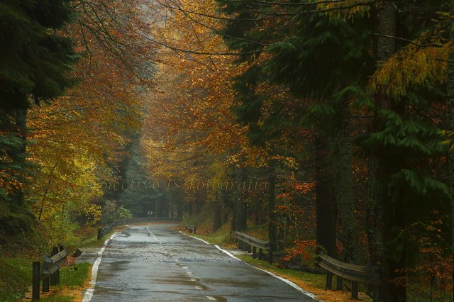 Siga por la carretera