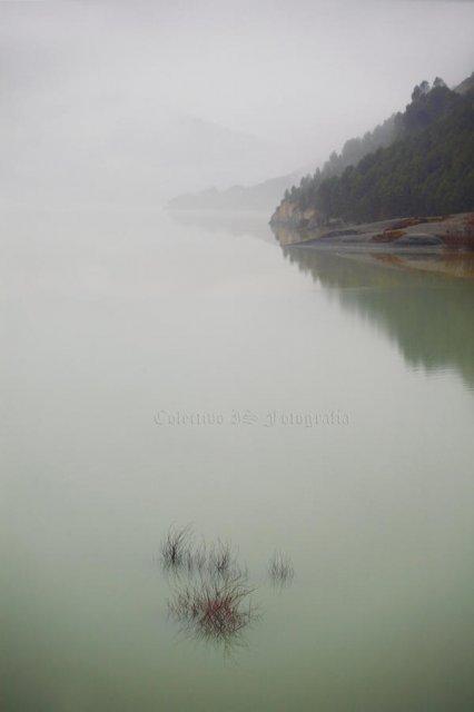 Sutilezas en niebla y agua