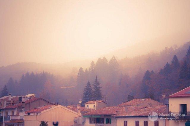 The mist / La niebla