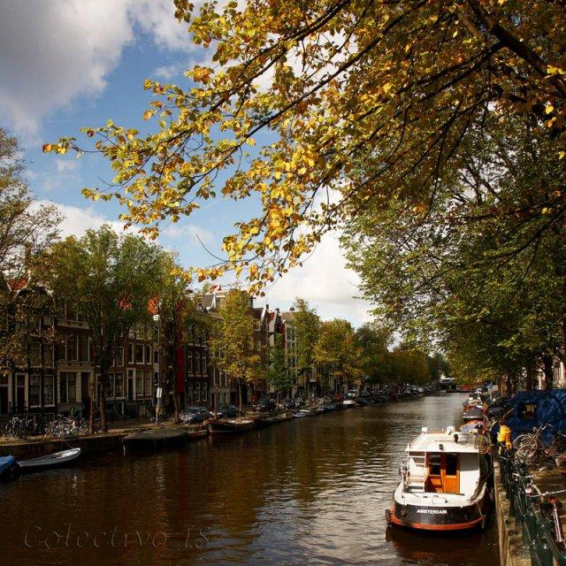 Una postal holandesa
