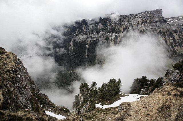 Va de nieblas