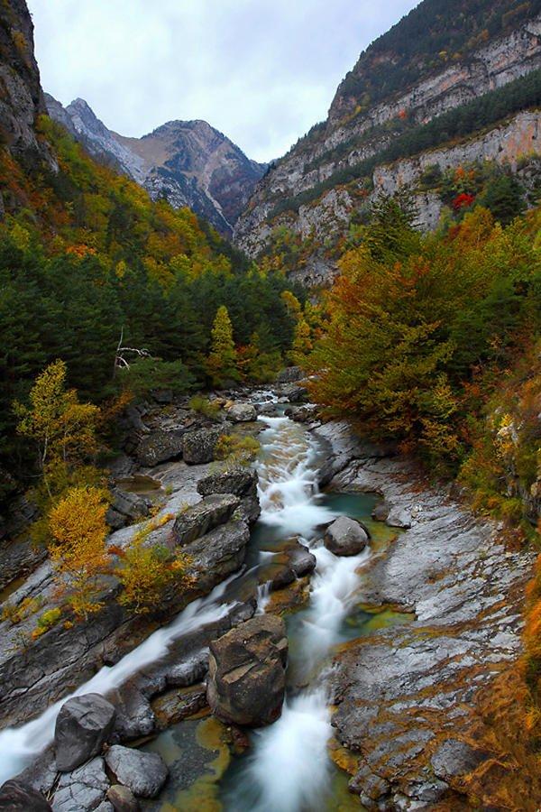 2 otoños (Pepi Sánchez Sabater)