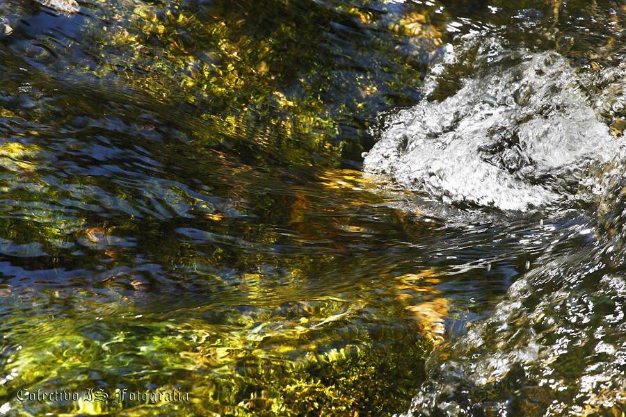 Abstracciones acuáticas  (Txema Bacaicoa (Colectivo IS))