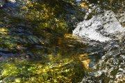 Abstracciones acuáticas