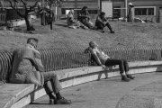 actores de parque