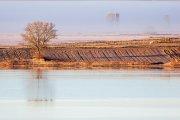 Al amanecer por la Laguna de Gallocanta