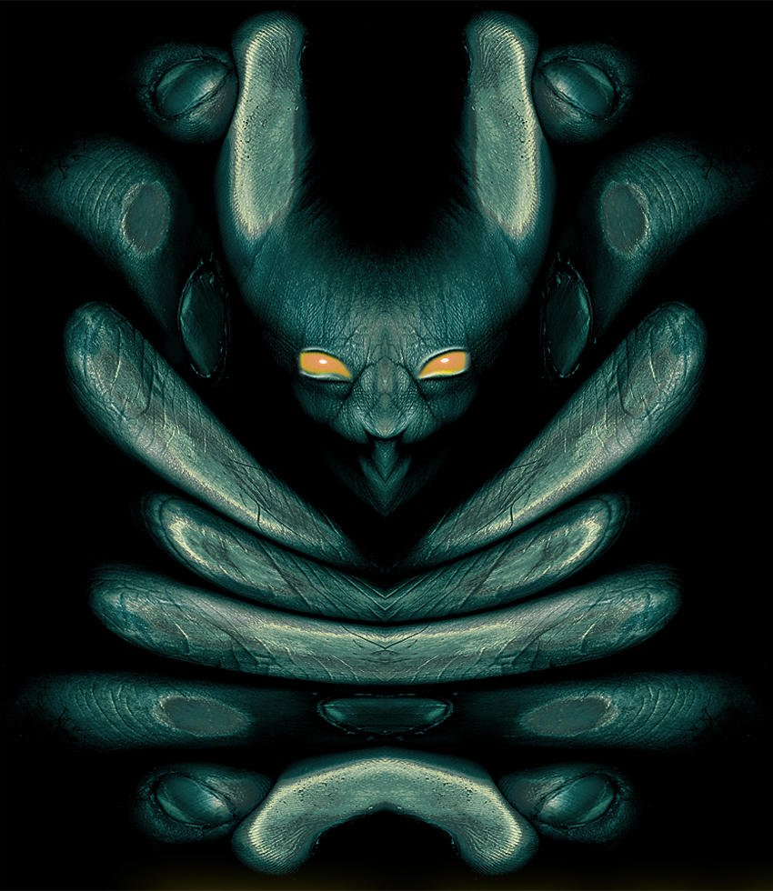 Alucinación (Salvador Solé Soriano)