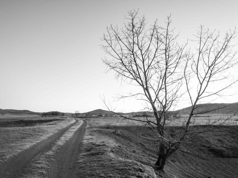 amanece (Josep Escayol Farran)