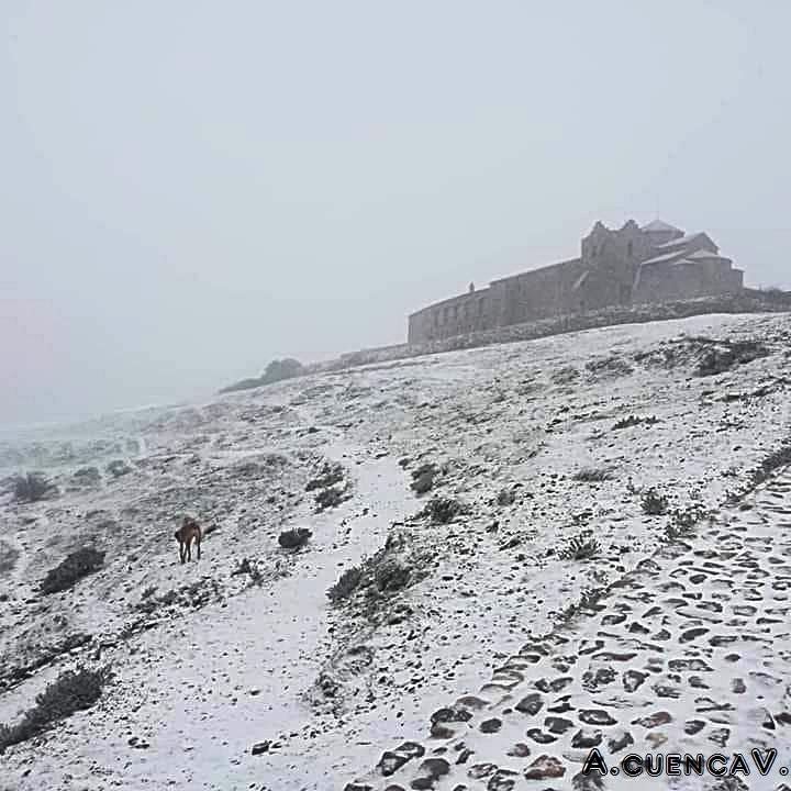 año de nieves, año de bienes. (Antonio Cuenca.   vaya)