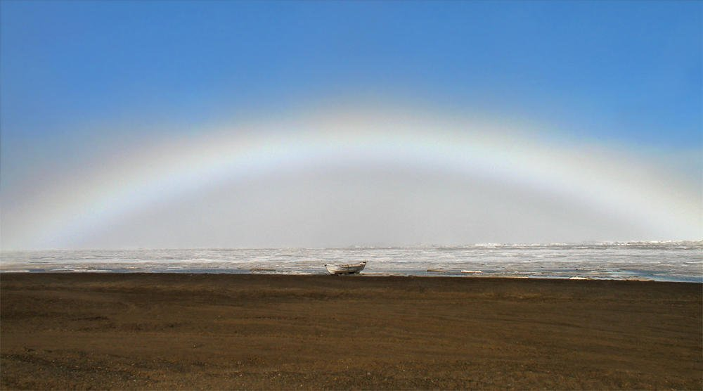 Arco polar (Salvador Solé Soriano)