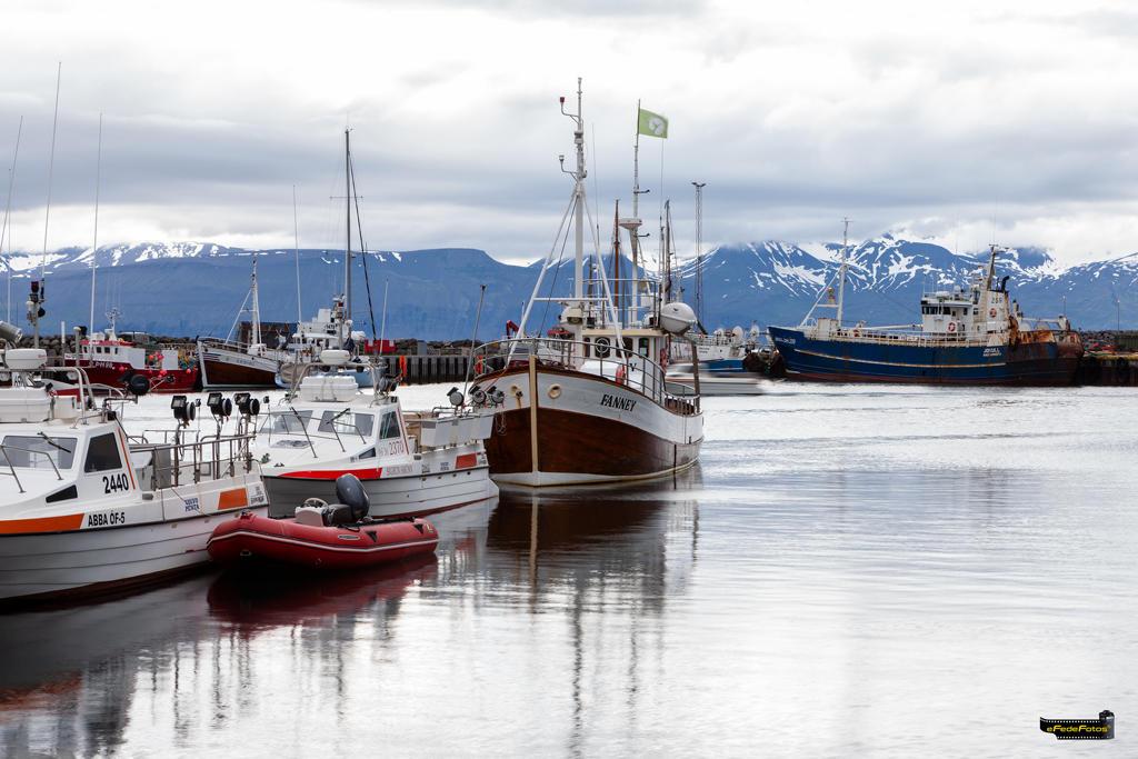 Atardecer en el puerto de Húsavík (Fede Rosillo)