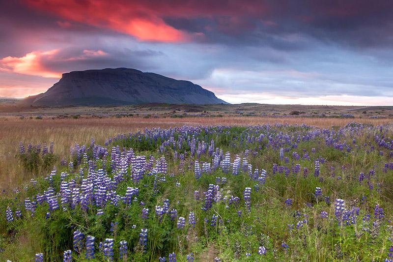 Atardecer junto al Hekla, Islandia 85 (david Pérez Hens)