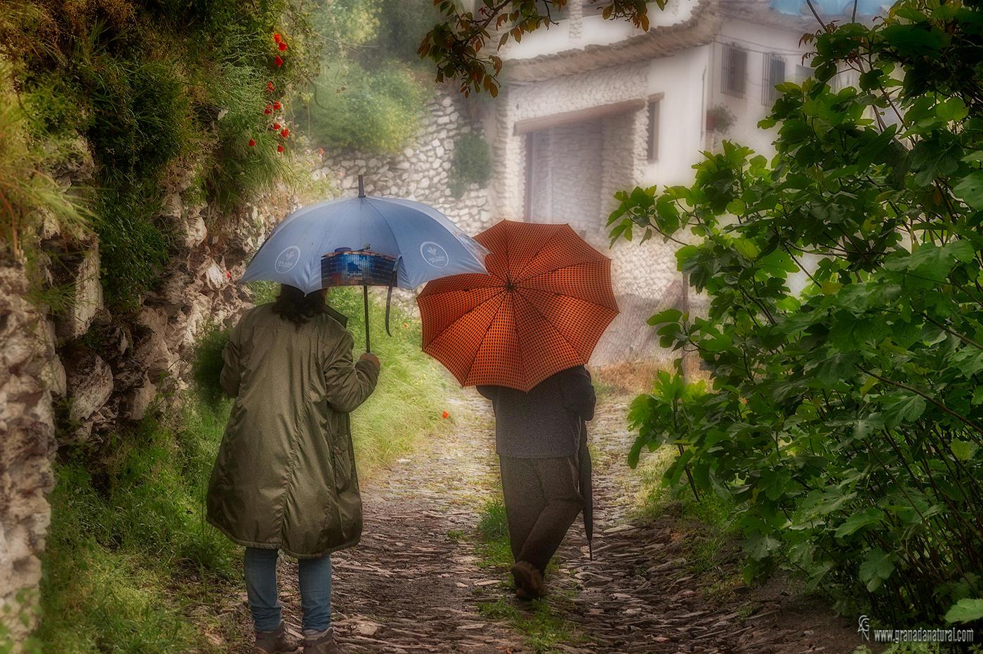 Bajo la lluvia en la Alpujarra (Lucas Gutierrez Jiménez)