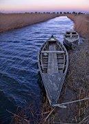 Barcas en la Bassa de les Olles