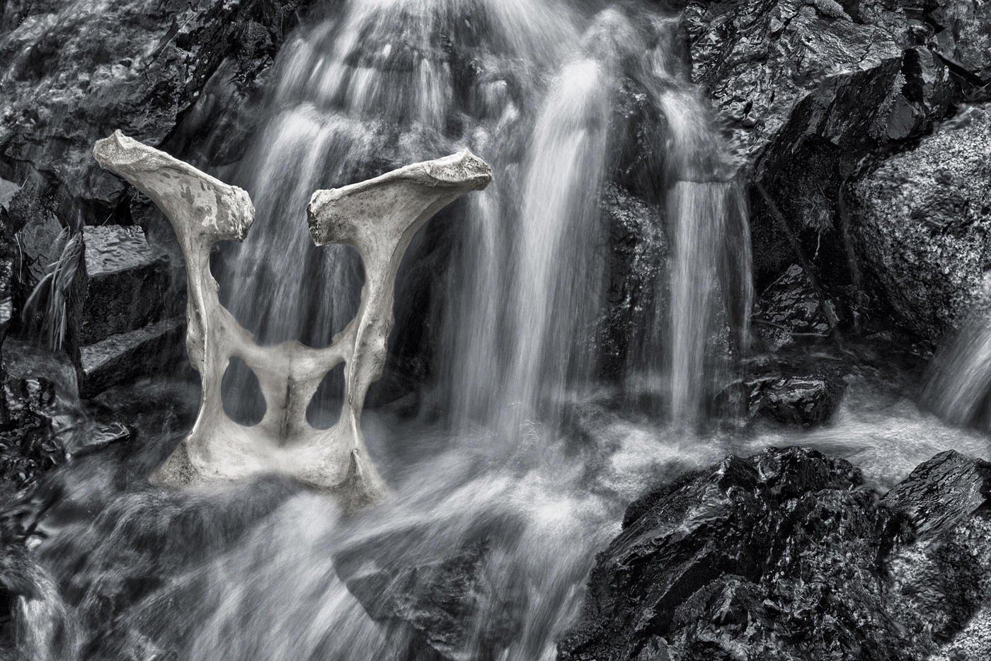 Caída de agua con pelvis (Salvador Solé Soriano)