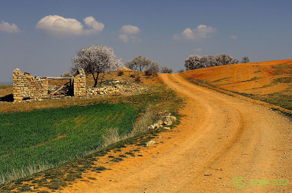 Camino a... (José Alberto Blancas Marín)