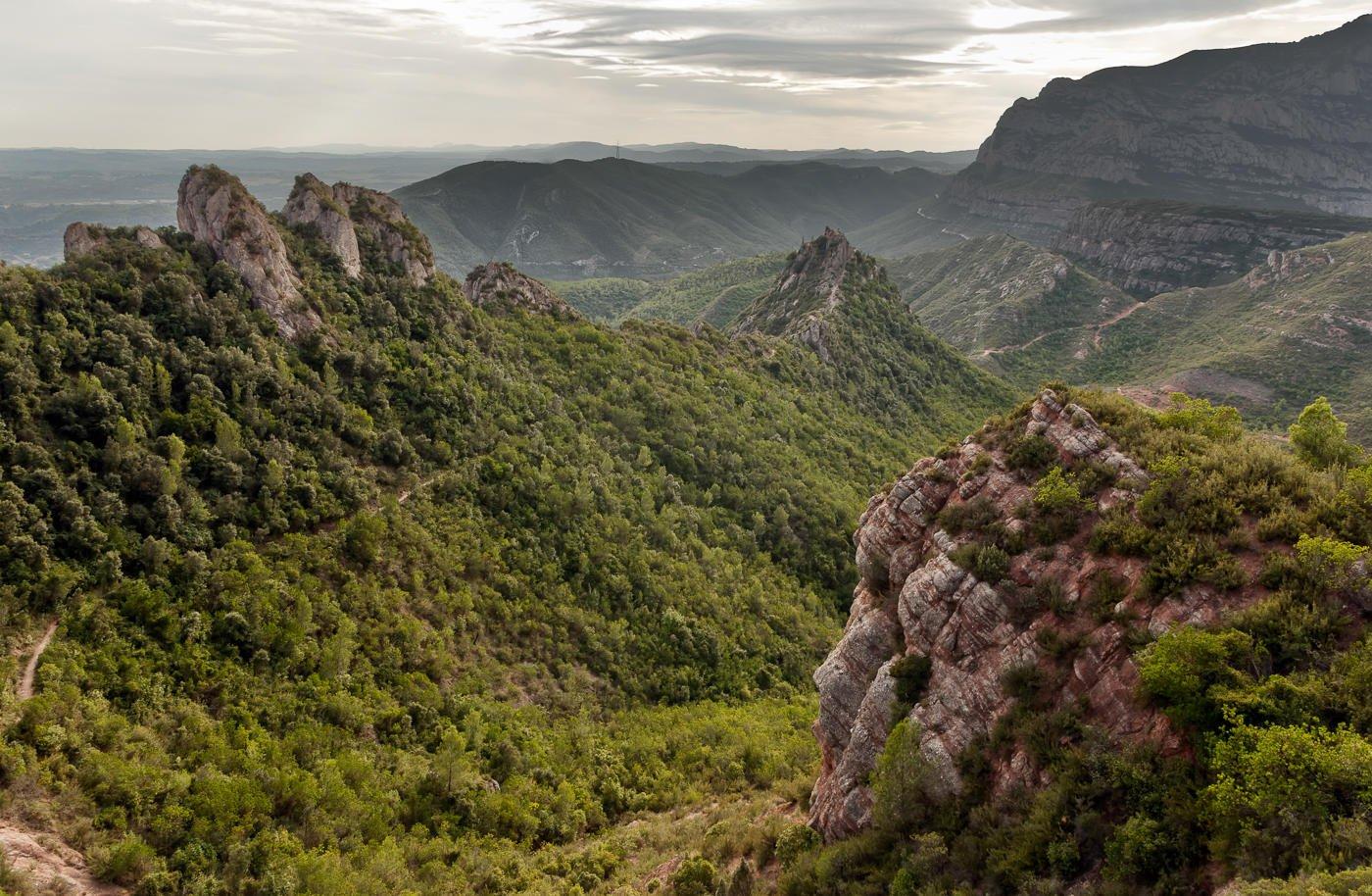 Camino al Puig de L´Hospici (Miguel Angel Vázquez Márquez)