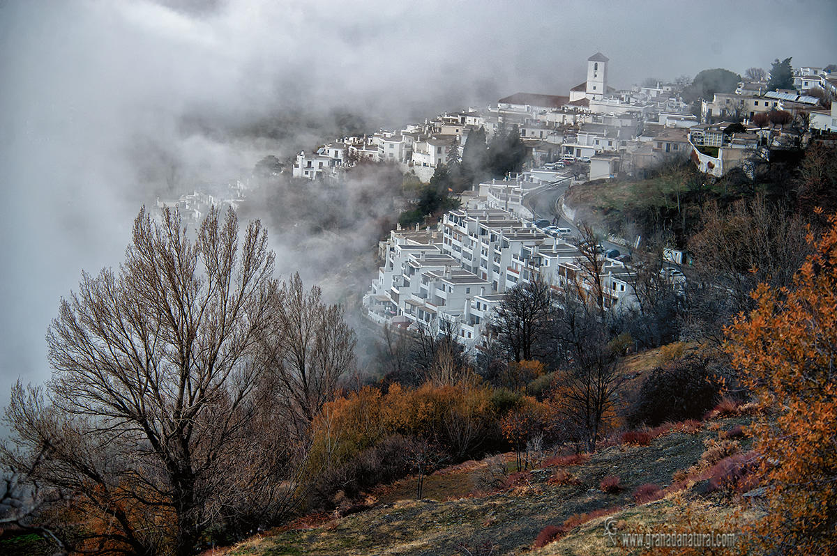 Capileira entre la niebla (Lucas Gutierrez Jiménez)