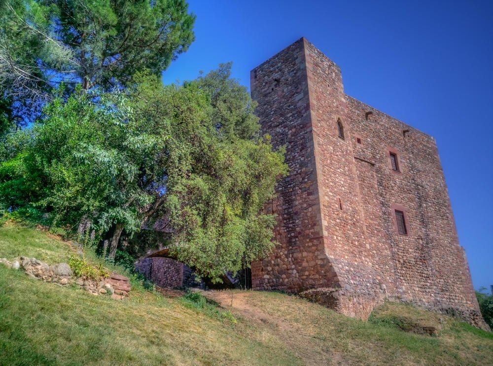 Castell Cartoixa (F. Xavier Vilamanyà Prat)
