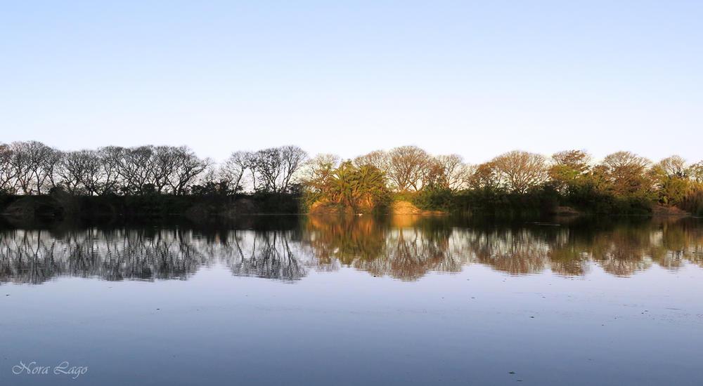 Claroscuro en la laguna (Norma   Betty Lago)