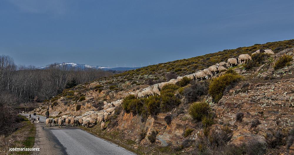 Con las montañas (José-María Suárez Domingo)