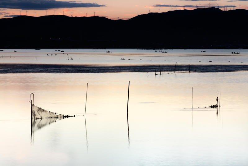 Delta tranquilo (Jose Luis Rubio Perez)
