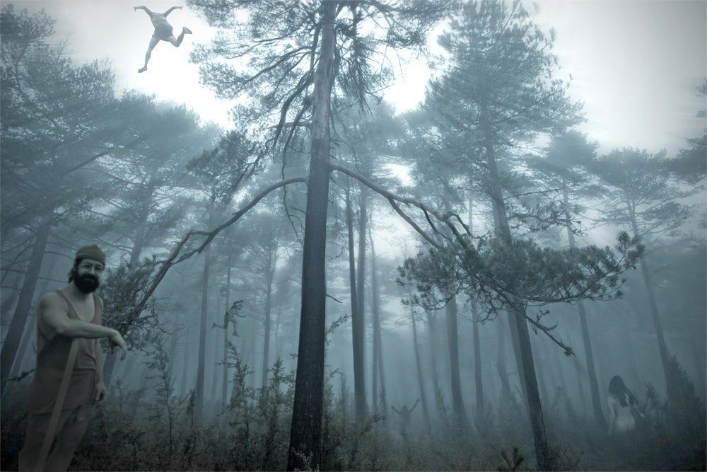 El bosque de los locos (Salvador Solé Soriano)