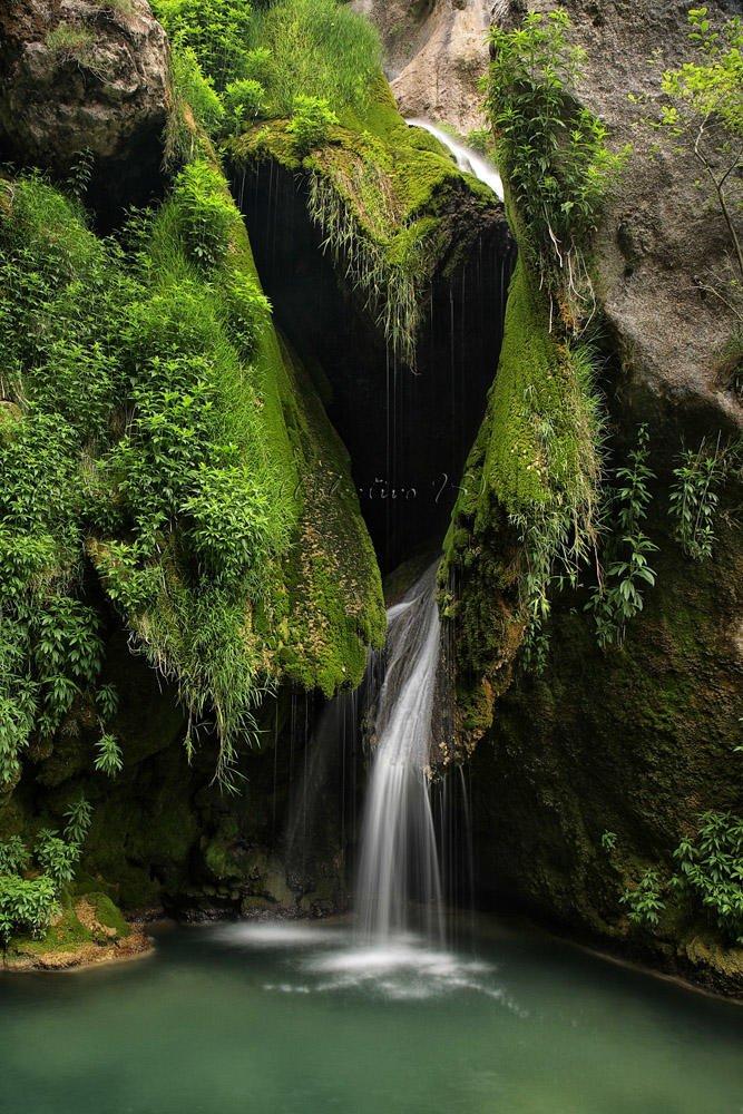 El corazón verde del Urederra (Txema Bacaicoa (Colectivo IS))