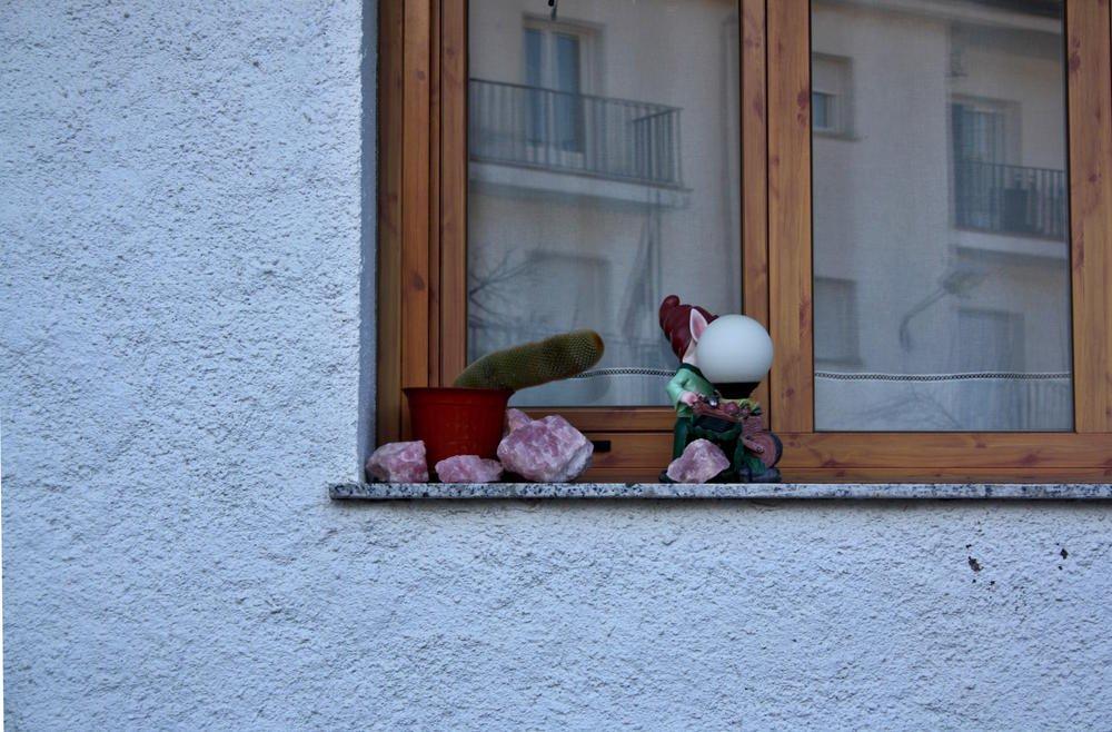 El enanito y el cactus (Alberto Arcos Hurtado)
