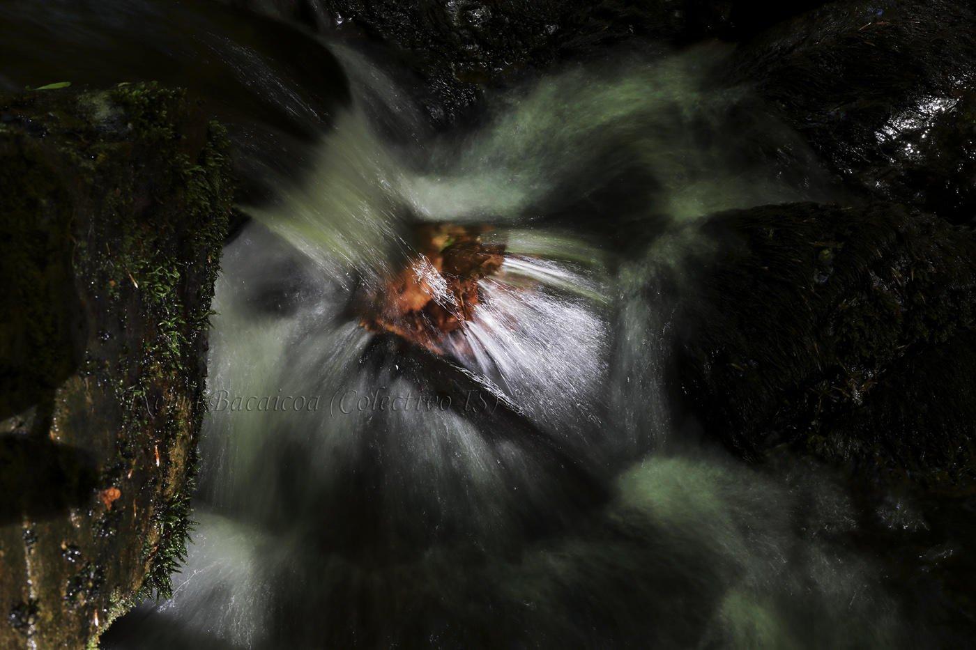 El espiritu del río (Txema Bacaicoa (Colectivo IS))