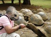 El hombre tortuga