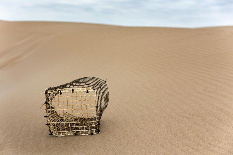 el rete en la arena (Jose Luis Rubio Perez)