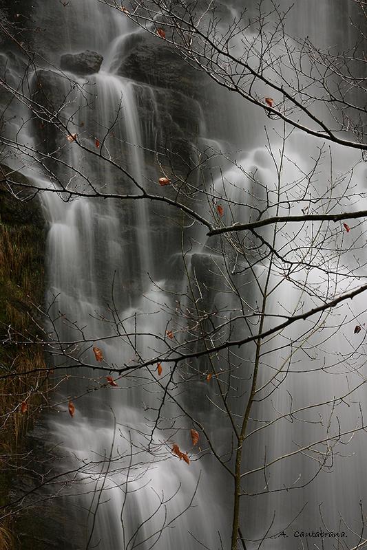 El señor de las aguas. (Antonio Cantabrana Mardones)