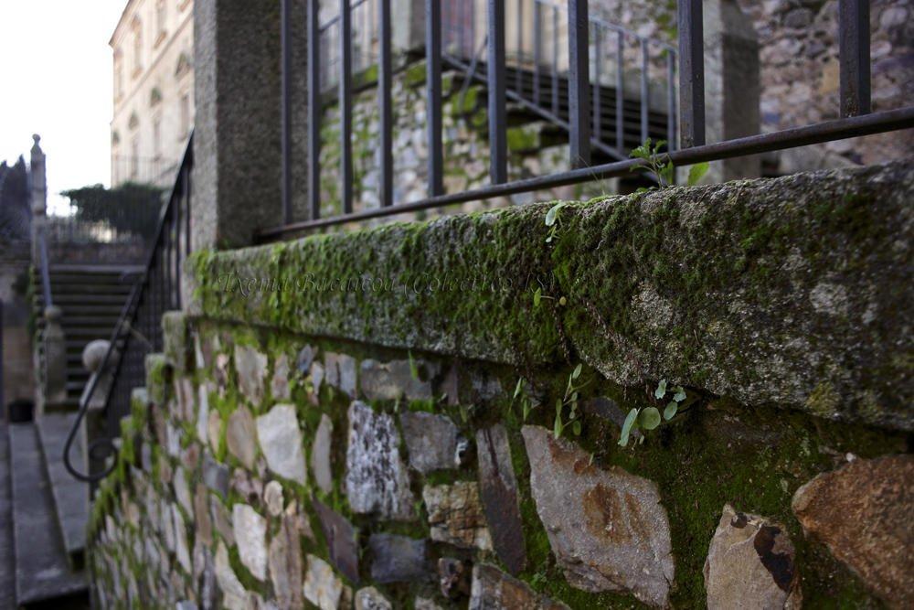Escaleras (Txema Bacaicoa (Colectivo IS))