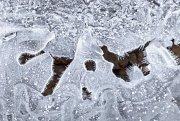 Escrito en hielo