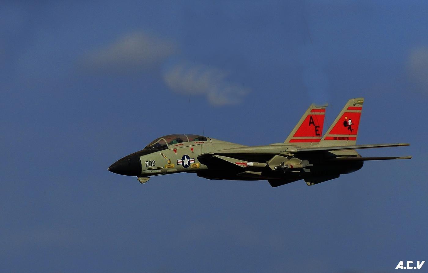 F-14A Tomcat (Antonio Cuenca.   vaya)