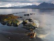 Fiordo.Islandia 201