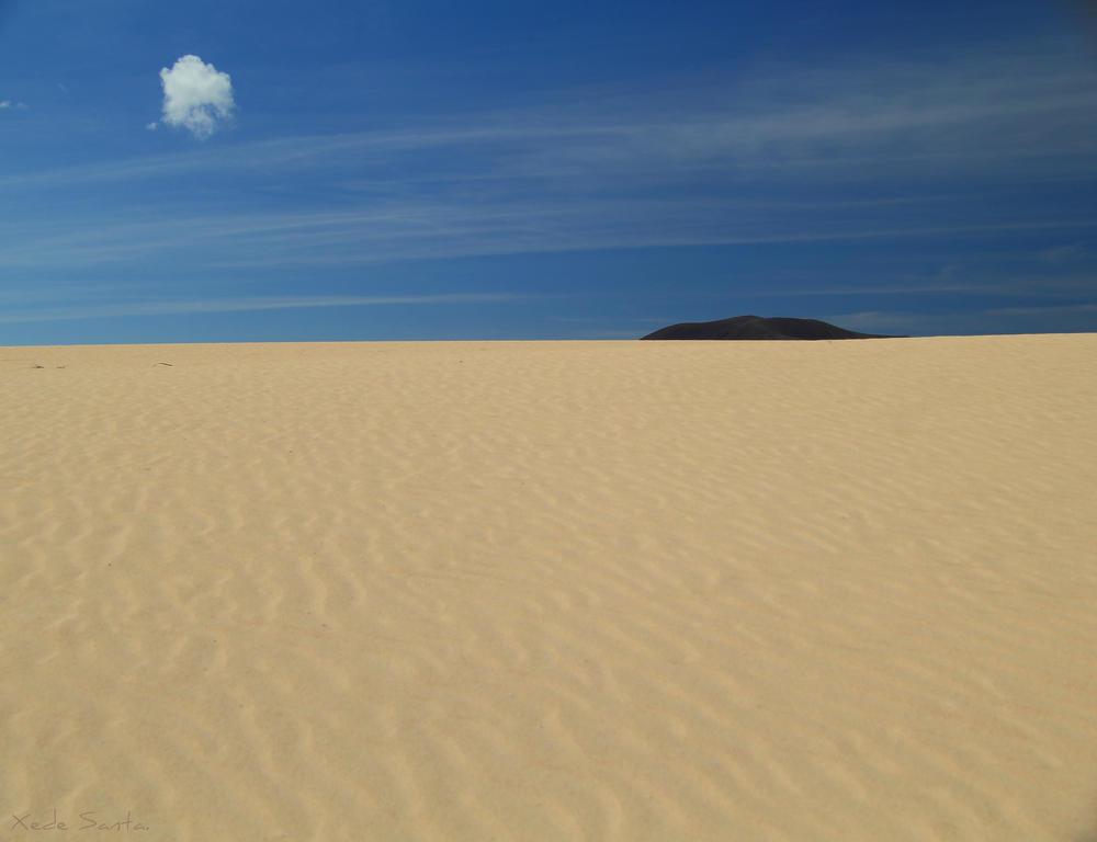 Fuerteventura. (chedey santana)